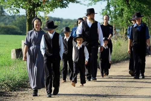 Springmeier- Illuminati Use Amish as a Front, Totalrehash.com