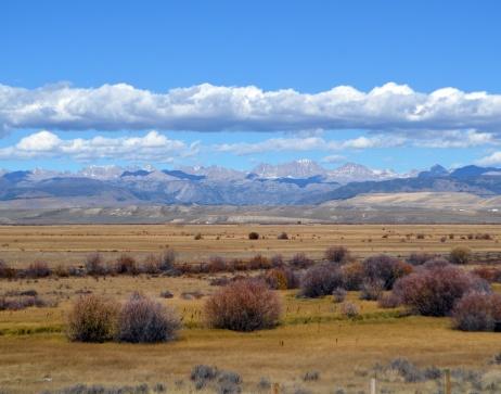 Sage Brush landscape.jpg