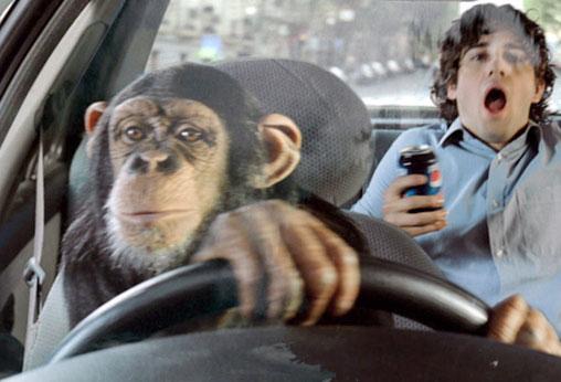 ape.jpeg