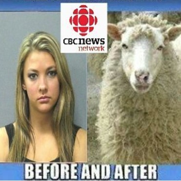 cbc-news.jpg