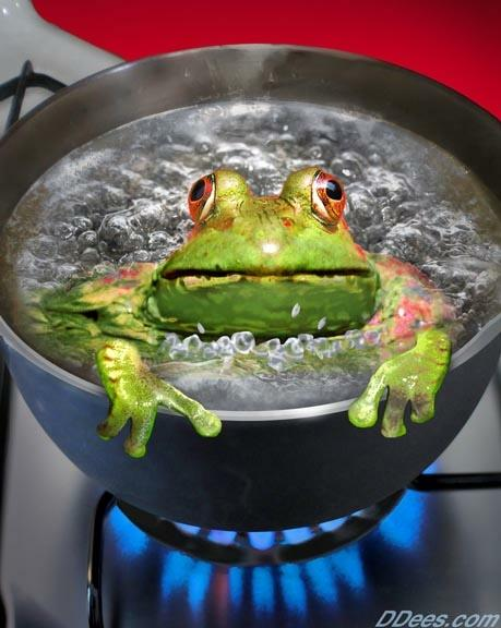 dees-frog.jpg