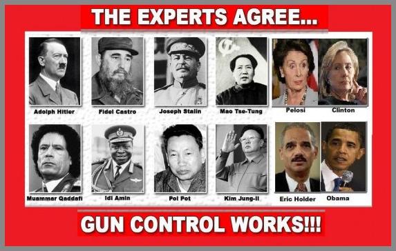 gun-control-experts.jpeg