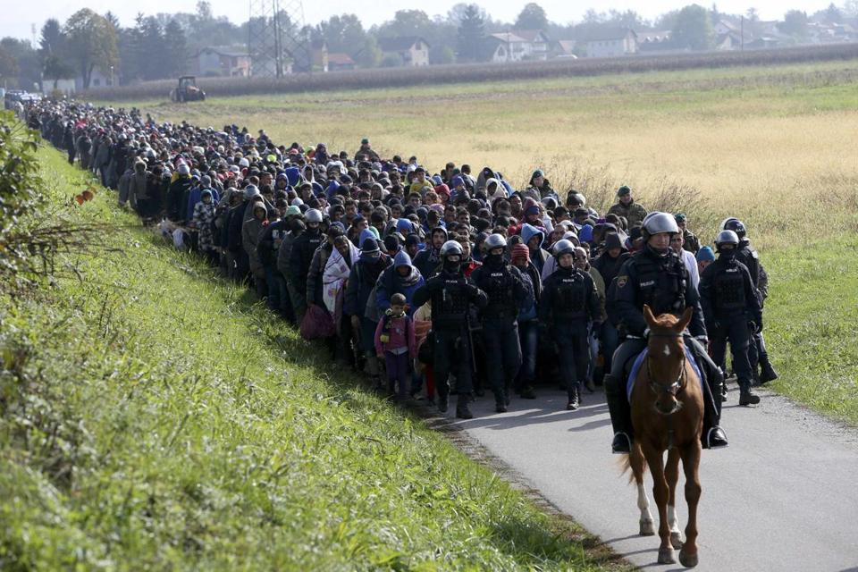 migrants (1).jpg
