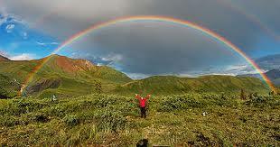 rainbows.jpeg
