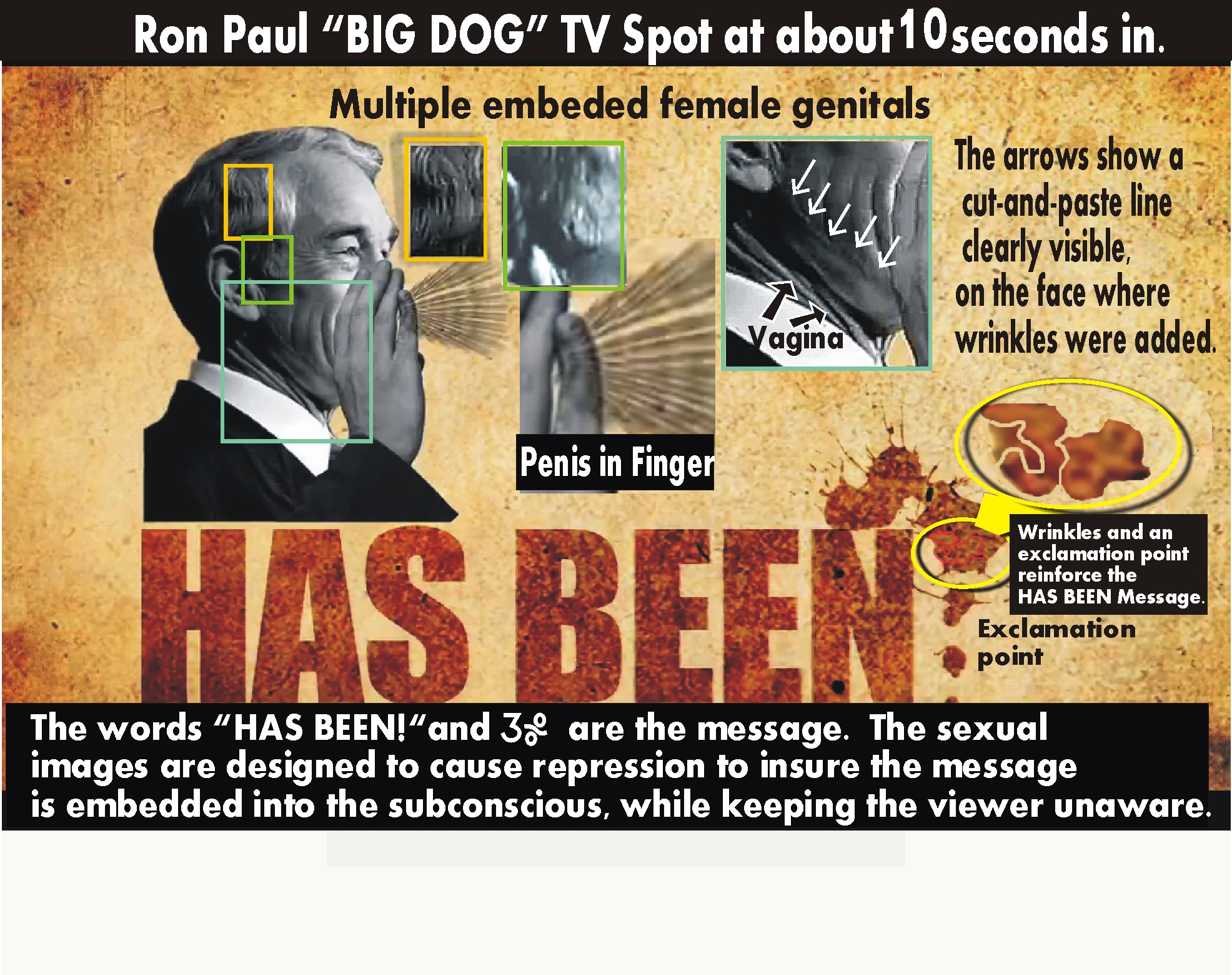 ron paul penis color coded.jpg