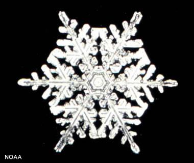 snowflake (1).jpg