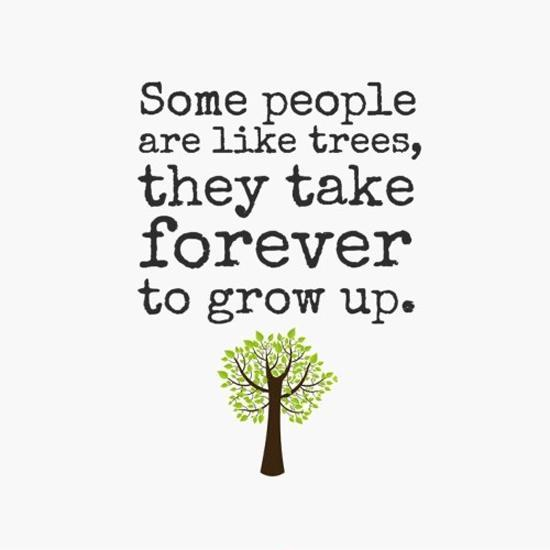 some-people-are-like-trees-they-take-forever-to-grow-up-quote-1.jpg