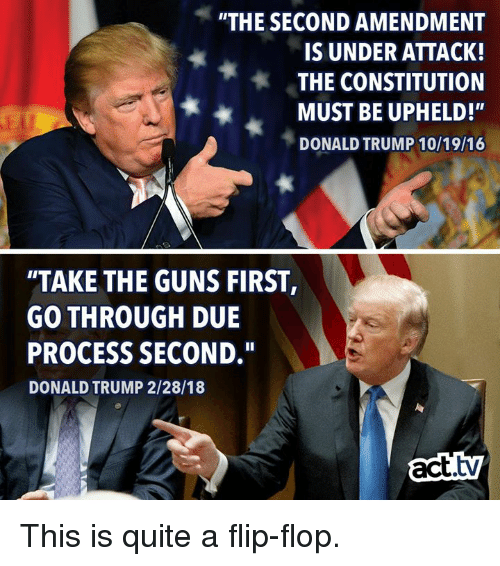 the-second-amendment-is-under-attack-the-constitution-must-be-31244671.png