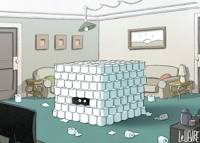 toilet-paper-fortress.JPG