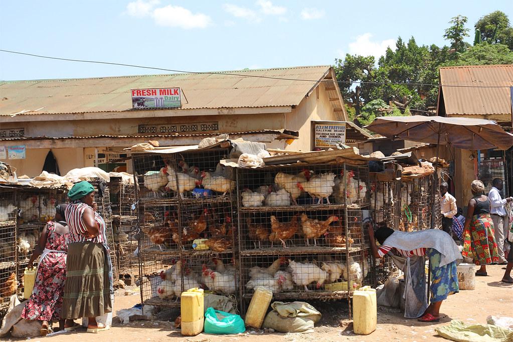 uganda-informal-economy-coronavirus-covid19.jpg